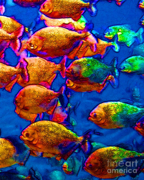 Wingsdomain Photograph - School Of Piranha V3 by Wingsdomain Art and Photography