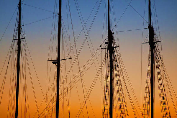 Wall Art - Photograph - Schooner Masts Martha's Vineyard by Carol Leigh