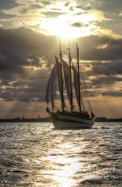 Photograph - Schooner Pride Charleston Sc by Dustin K Ryan