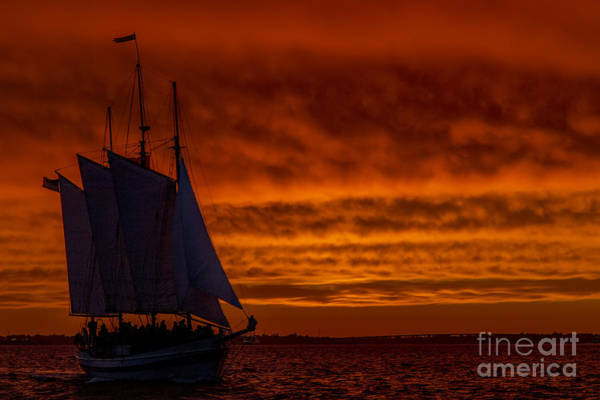 Wall Art - Photograph - Schooner Sailboat Sunset Charleston South Carolina by Dustin K Ryan