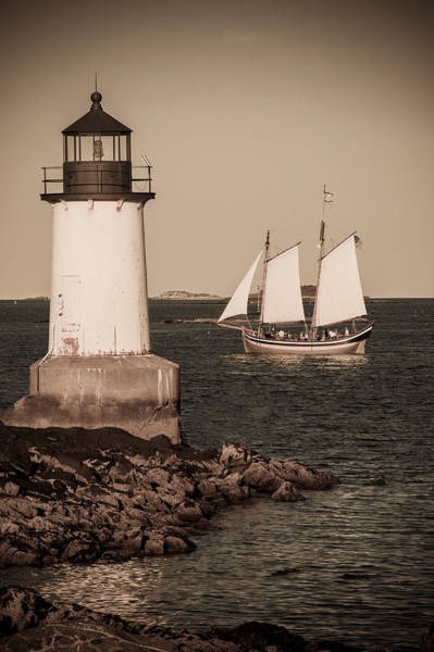 Photograph - Schooner Sailing Into Harbor by Jeff Folger