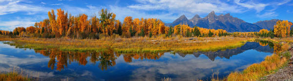 Art Print featuring the photograph Schwabacher Autumn Reflections Panorama by Greg Norrell
