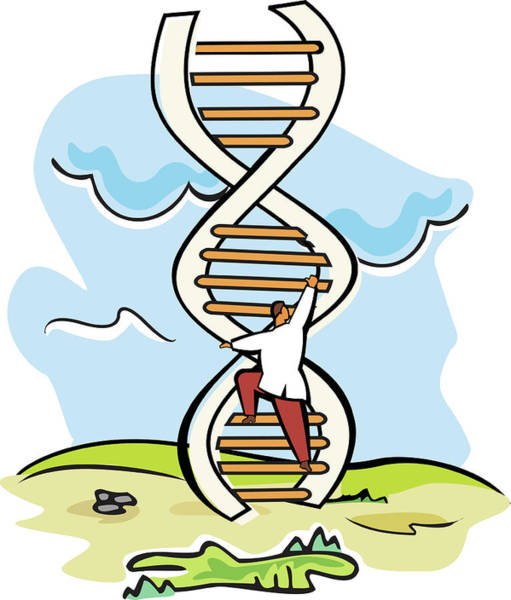 Ladders Photograph - Scientist Moving Up On A Dna Ladder by Fanatic Studio / Science Photo Library