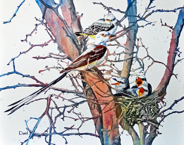 Painting - Da149 Scissortailed Flycatchers By Daniel Adams by Daniel Adams