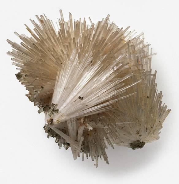 Geological Photograph - Scolecite by Dorling Kindersley/uig