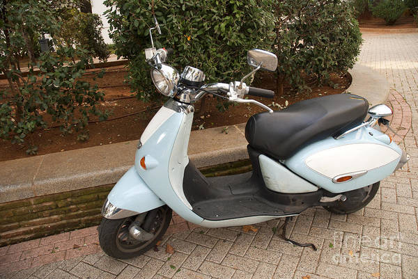Photograph - Scooter In Marbella Spain by Brenda Kean