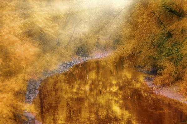 Photograph - Scotland Reflections - Autumn On The River Tay - Landscape by Jason Politte
