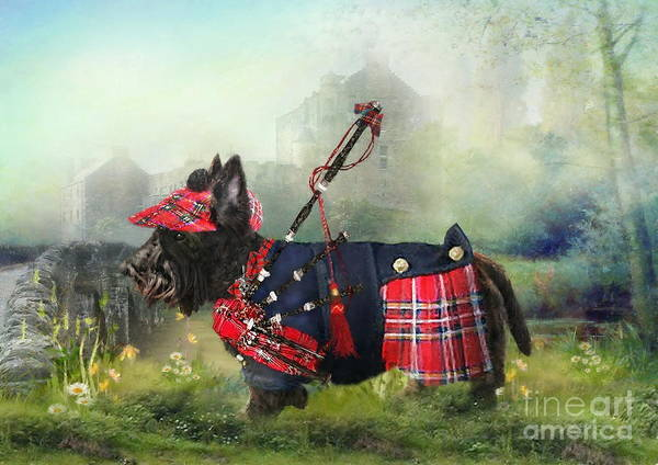Bagpipe Wall Art - Photograph - Scottie Of The Glen by Trudi Simmonds