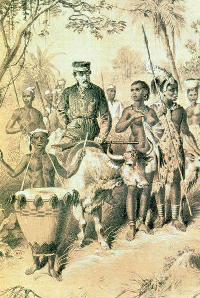 Missionary Photograph - Scottish Explorer And Missionary David Livingstone by George Bernard/science Photo Library