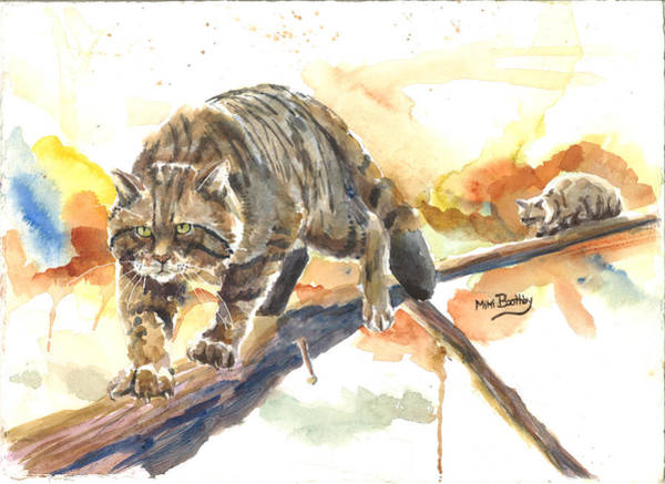 Scottish Wildcat Tom Art Print