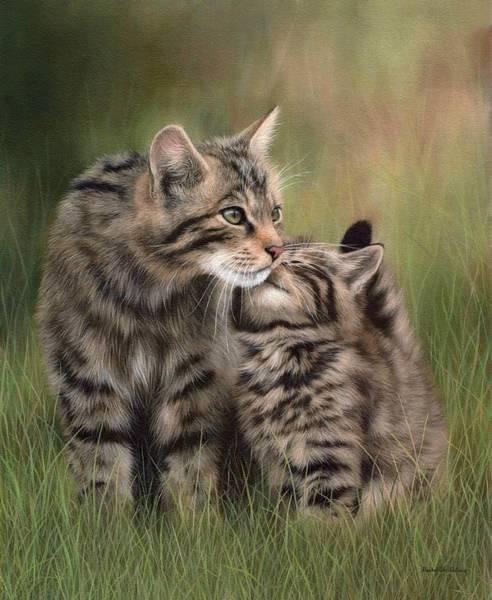 Kitten Wall Art - Painting - Scottish Wildcats Painting - In Support Of The Scottish Wildcat Haven Project by Rachel Stribbling