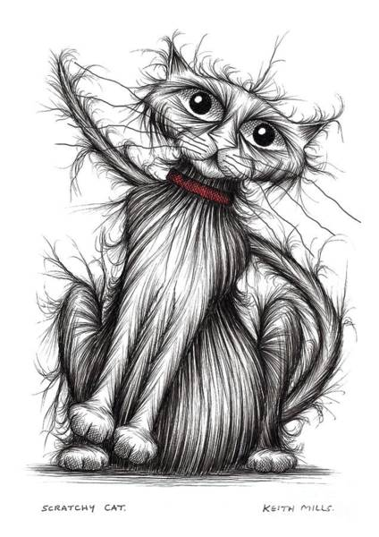 Puss Drawing - Scratchy Cat by Keith Mills