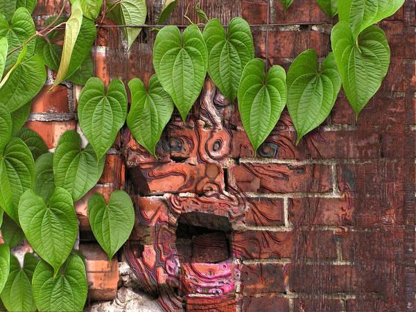 Digital Art - Screaming Wall by Lynn Hansen