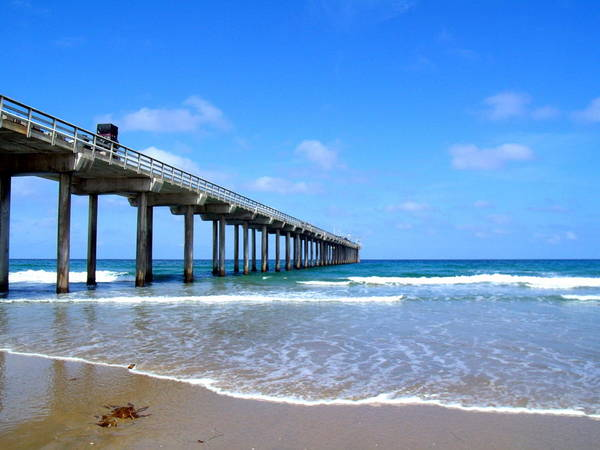 Scripps Pier Photograph - Scripps Pier Side by Stephanie Moses