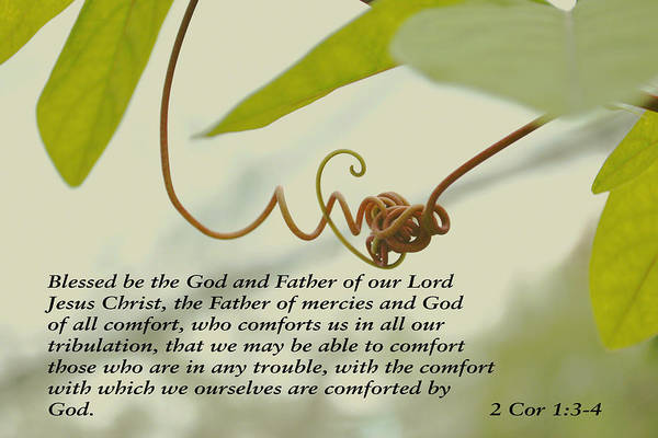 Photograph - Scriptures Of Comfort 1 by Kate Word