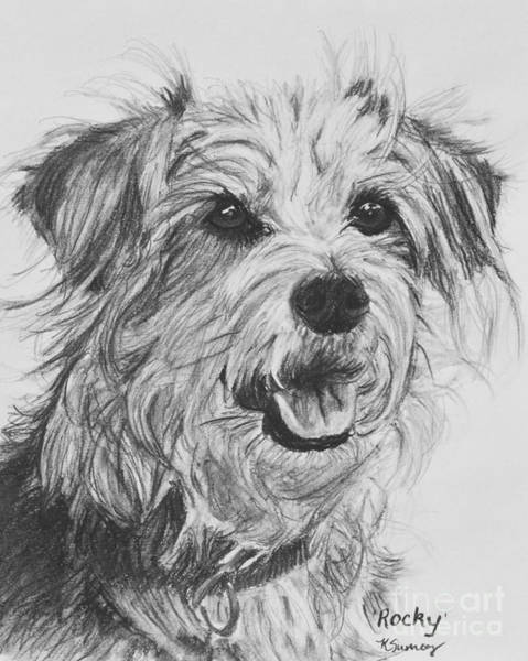 Art Print featuring the drawing Scruffy Terrier Dog Drawing by Kate Sumners