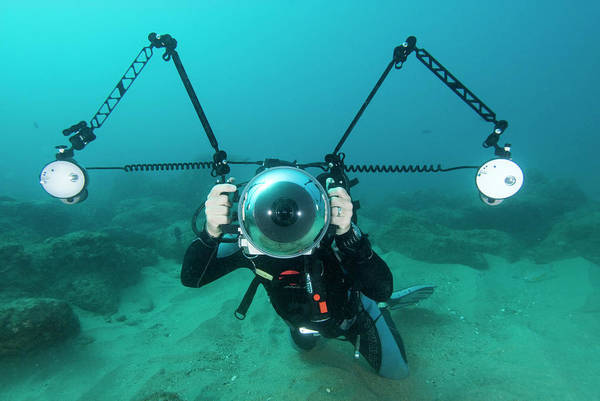 Wall Art - Photograph - Scuba Diver by Roger Munns, Scubazoo/science Photo Library