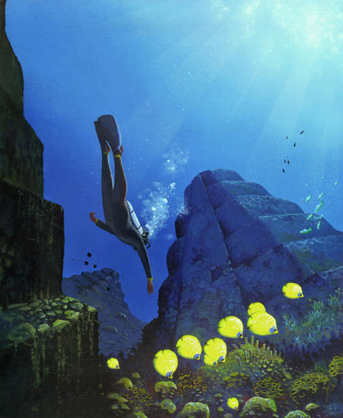 Scuba Diving Photograph - Scuba Diving by Mark Garlick/science Photo Library