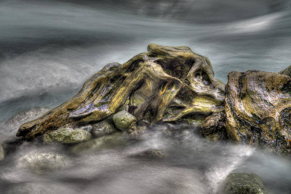 Photograph - Sculpture By Nature by Ivan Slosar