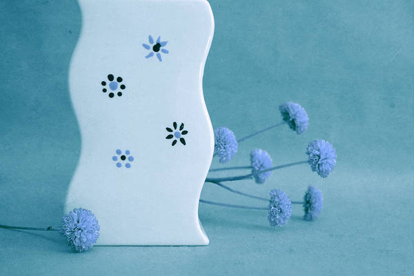 Blue Vase Photograph - Scurves - 09at01 by Variance Collections
