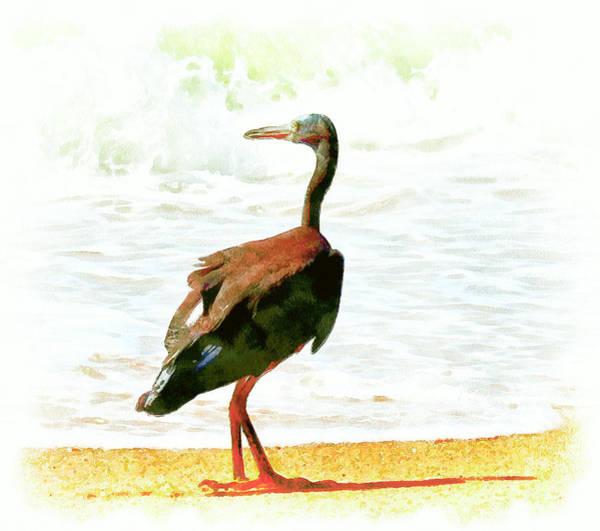 Great Lakes Digital Art - Sea Bird by Yury Malkov