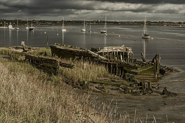 Photograph - Sea Bones by Stephen Barrie