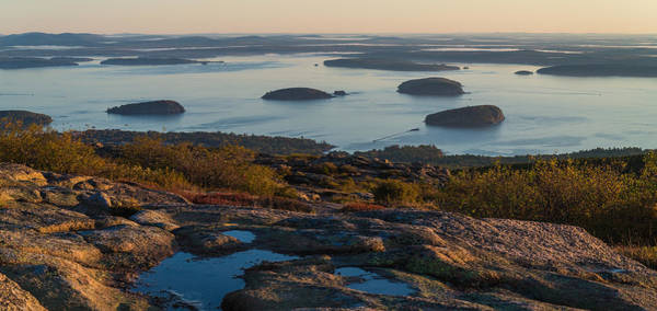 Acadia National Park Wall Art - Photograph - Sea Dots by Kristopher Schoenleber