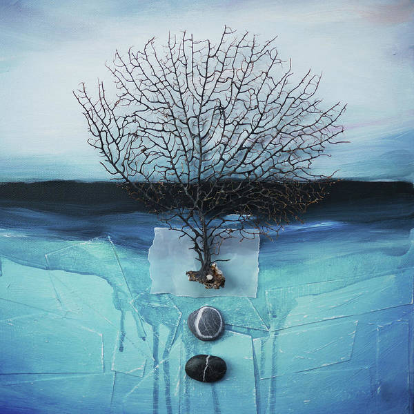 Coral Digital Art - Sea Fan And Pebbles On A Blue Sea by Fiona Crawford Watson