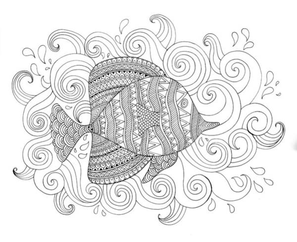Adult Drawing - Sea Fish 1 by MGL Meiklejohn Graphics Licensing