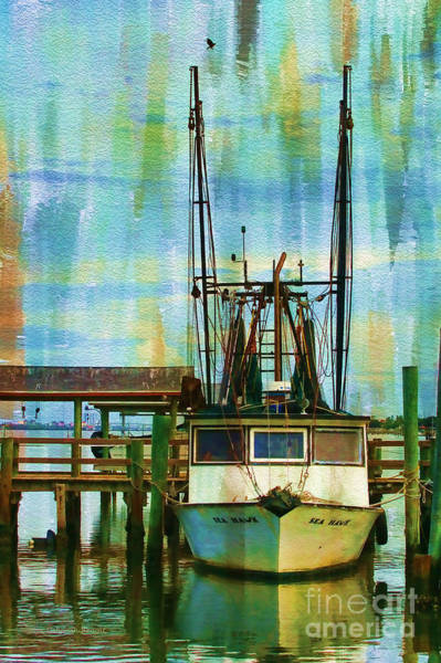 Photograph - Sea Hawk Docked by Deborah Benoit