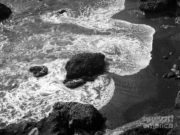 Photograph - Sea Lion Cove by James B Toy