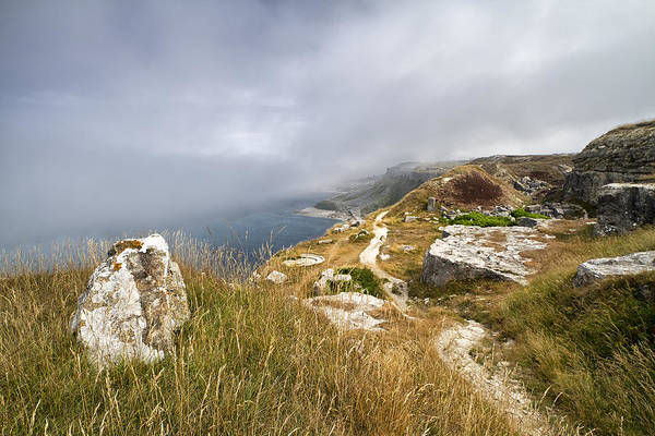 Shirleys Bay Photograph - Sea Mist by Shirley Mitchell