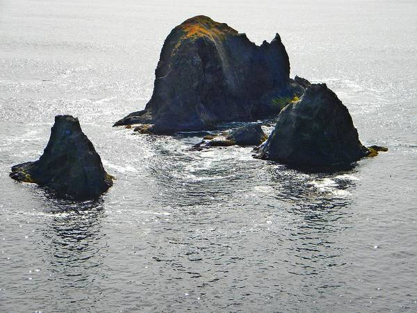 Photograph - Sea Mounts by Frank Wilson