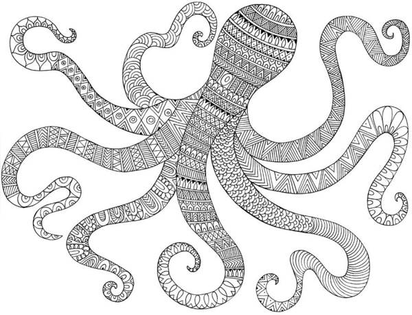 Colours Drawing - Sea Octopus by MGL Meiklejohn Graphics Licensing