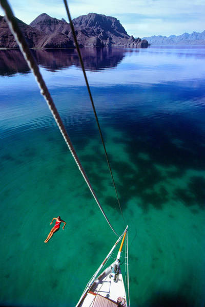 Photograph - Sea Of Cortez by Gary Felton