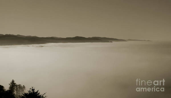 Photograph - Sea Of Fog by Kathi Shotwell