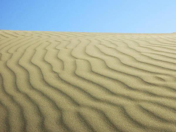 Photograph - Sea Of Sand by Lara Ellis