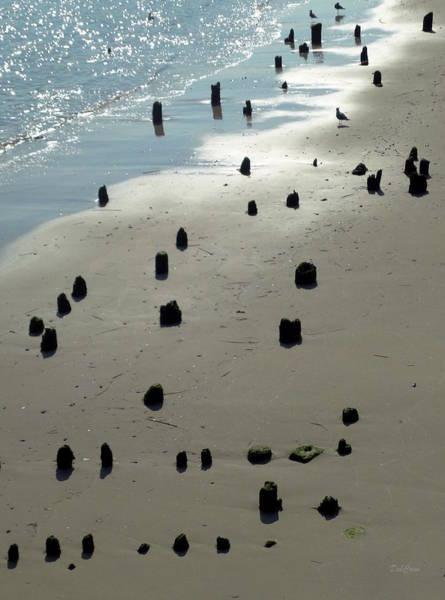 Turqoise Photograph - Sea Piles by Deborah  Crew-Johnson