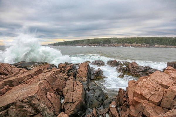 Photograph - Sea Splash by Sara Hudock