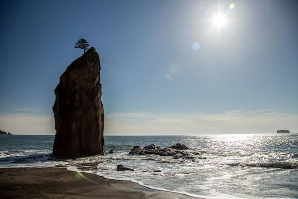 Photograph - Single Sea Stack In Olympic National Park by Pierre Leclerc Photography