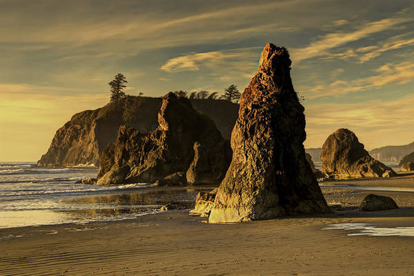 Wall Art - Photograph - Sea Stacks At Ruby Beach by Alvin Kroon