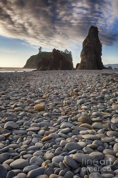Photograph - Sea Stacks by Bryan Mullennix