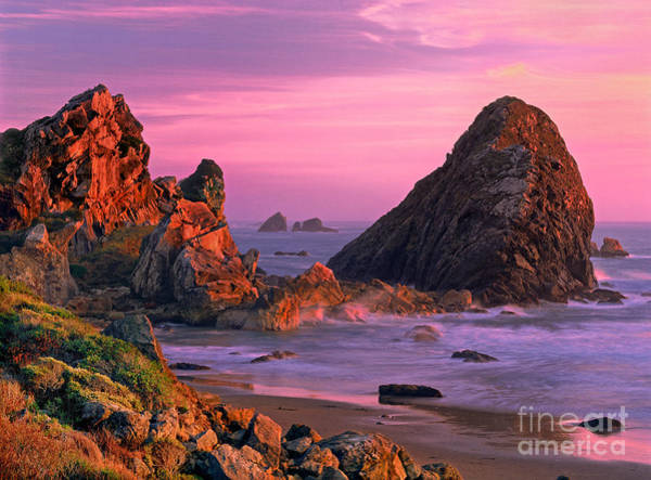 Photograph - Sea Stacks Clearing Storm Harris State Beach Oregon by Dave Welling