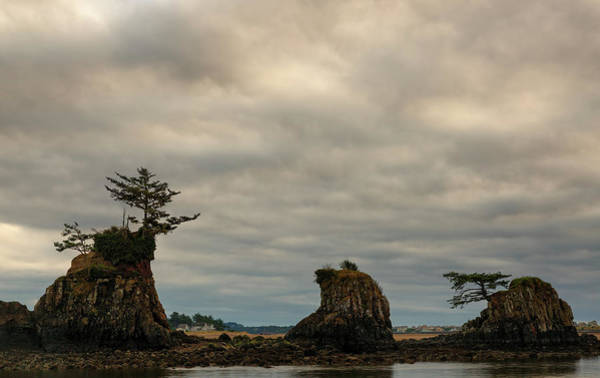 Smith Rock Photograph - Sea Stacks, D-river, Lincoln City by Don Smith