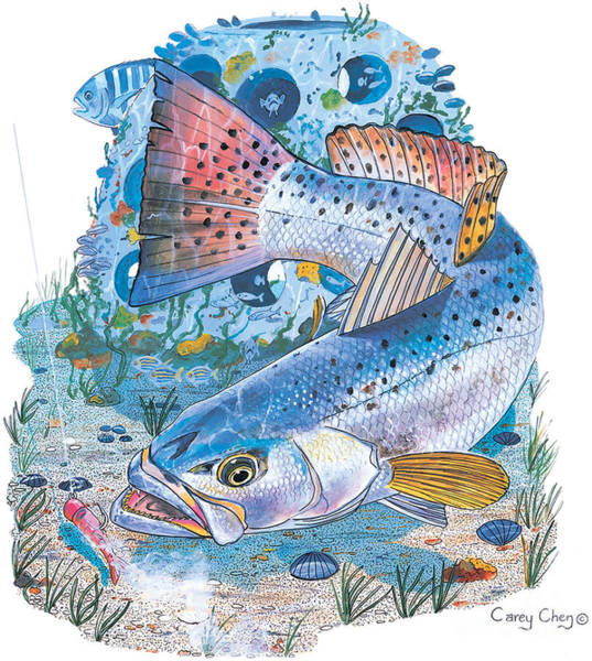 Gator Wall Art - Painting - Sea Trout Wreck by Carey Chen