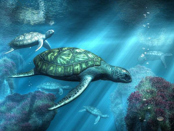 Digital Art - Sea Turtles by Daniel Eskridge