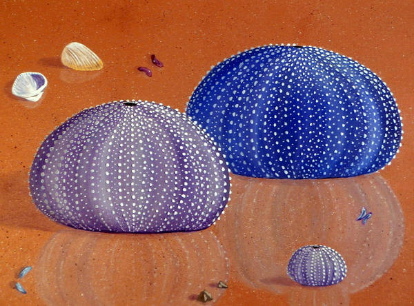 South Pacific Painting - Sea Urchins On The Beach by Karyn Robinson