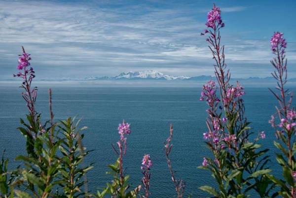 Photograph - Sea Views by Darlene Bushue