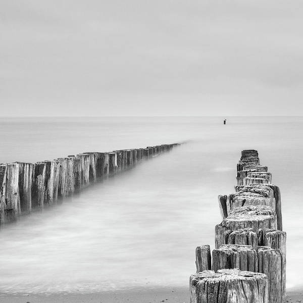 Wall Art - Photograph - Sea Watcher by Michelle Degryse