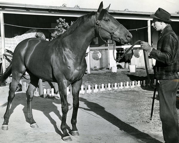 Trot Wall Art - Photograph - Seabiscuit Horse Racing #1 by Retro Images Archive